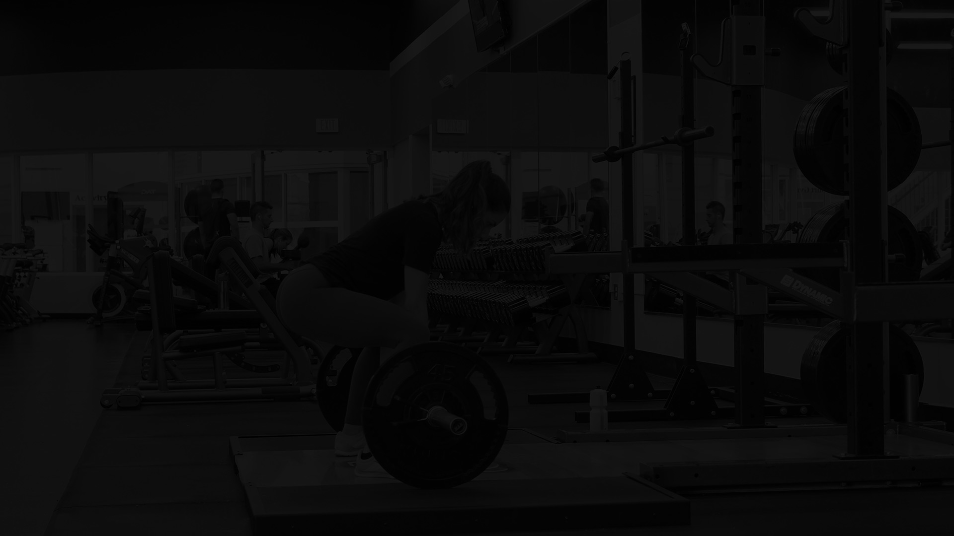 TLD Coaching Fitness Website
